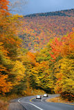 Highway and Autumn foliage Stock Image