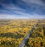 Highway in the autumn forest Royalty Free Stock Photos