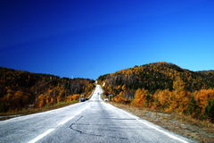Highway through autumn forest stock image
