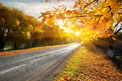 Highway and autumn Stock Photo