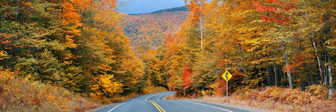 Highway and Autumn forest Stock Photos