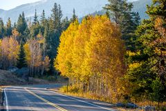 Highway at autumn in Colorado, USA. Highway at autumn sunny day in Rocky Mountain National Park. Colorado, USA Royalty Free Stock Images