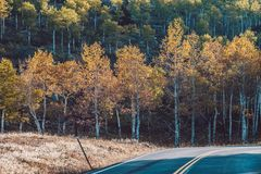 Highway at autumn in Colorado, USA. Highway at autumn sunny day in Rocky Mountain National Park. Colorado, USA Stock Image