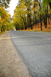 Highway in autumn wood. The highway in autumn woodrn Royalty Free Stock Photo
