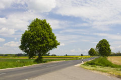 Highway with blue sky. Landscape series - highway with blue sky Royalty Free Stock Photo