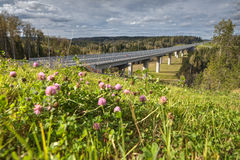Highway bridge over russian forest in landscape, sunny summer da Royalty Free Stock Photos