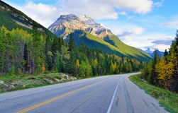 Highway through the Canadian Rockies along the Icefields Parkway between Banff and Jasper. In the fall royalty free stock photo