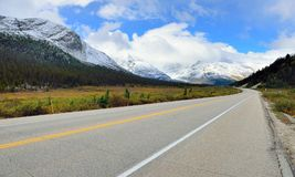 Highway through the Canadian Rockies along the Icefields Parkway between Banff and Jasper. In the fall royalty free stock photography