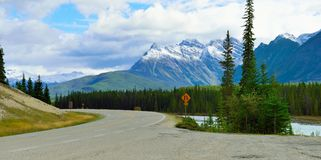 Highway through the Canadian Rockies along the Icefields Parkway between Banff and Jasper Stock Image