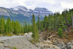Highway through the Canadian Rockies along the Icefields Parkway between Banff and Jasper Stock Photography