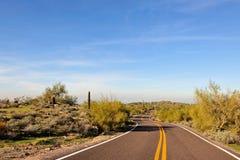 Highway through desert Royalty Free Stock Photography