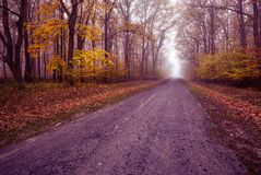 Highway early misty autumn morning Stock Photography