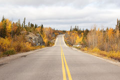 A highway through a fall forest Royalty Free Stock Images