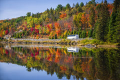Highway through fall forest. Tour bus driving though fall forest with colorful autumn leaves reflecting in lake. Highway 60 at Lake of Two Rivers, Algonquin Park Stock Photos