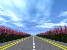 Highway flowers Stock Photos