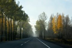 Highway in a foggy morning with cars driving towards. royalty free stock photos
