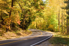 Highway through forest. Scenic view of deserted highway receding into distance through forest, autumn countryside scene Stock Photos