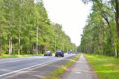 Highway in the forest. Stock Photography