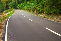 Highway in the jungle. Grey asphalt road and green roadside. Travelling in tropical island. Empty road in exotic nature. Green palm trees and blooming tropical Stock Photos