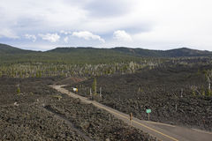 Highway Through Lava Flow In Oregon Stock Image