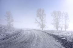 highway mgłowa Zdjęcia Royalty Free