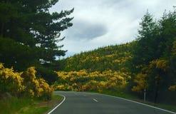 Highway in New Zealand Stock Photos