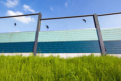 Highway noise barrier. With bird silhouettes Stock Image