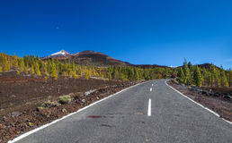 Highway over lava flow. Scenic highway or road over an old lava flow near Mt. Teide volcano, Tenerife, Canary Islands Royalty Free Stock Photo