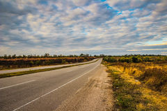 Highway. Road in a calmness yellow field Stock Photo