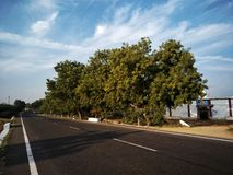 Highway road temple clouds neem tree Royalty Free Stock Photo