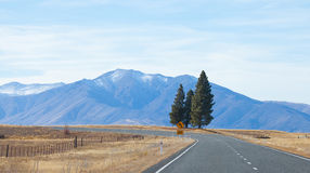Highway road to Tekapo lake Tekapo town Stock Images