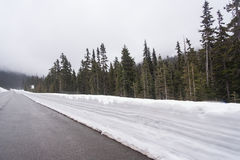 Highway running through forests of Washington covered with snow USA Royalty Free Stock Photo