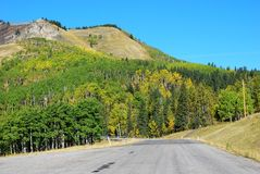 Highway in Sheep River Valley Royalty Free Stock Photography