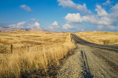 Highway with Tall Yellow Grass and Blue Sky. In California Royalty Free Stock Photos