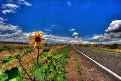 Highway Through Countryside Stock Photos