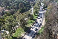 A highway among trees Stock Images
