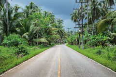 Highway in the tropics Stock Photography