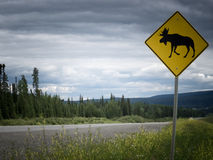 Highway warning roadsign attention moose crossing Royalty Free Stock Image