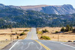 Highway and Wilderness Stock Image
