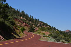 Highway in Zion National Park Stock Photography