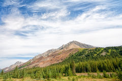 Highwood Pass Mountain Landscape. Canadian Rocky Mountains in the Highwood pass surrounded by forest Stock Images