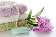 Higiena i zdrowie Obraz Royalty Free