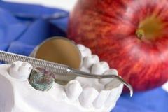 higiena jamy ustnej Obrazy Stock