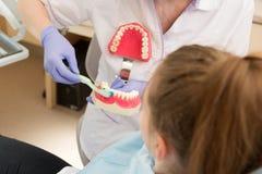 higiena jamy ustnej Dentysta demonstruje zębu szczotkować Obrazy Stock
