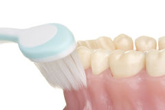 Higiene oral Foto de Stock Royalty Free
