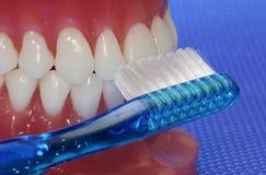Higiene oral fotos de archivo libres de regalías