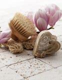 Higiene y rejuvenecimiento de la piel Imagen de archivo libre de regalías