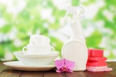 Higieny kuchni cleanser fotografia royalty free