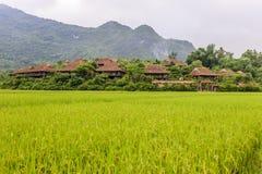 Higland at north Viet nam Royalty Free Stock Image