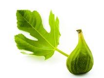 Higo verde Imagen de archivo libre de regalías